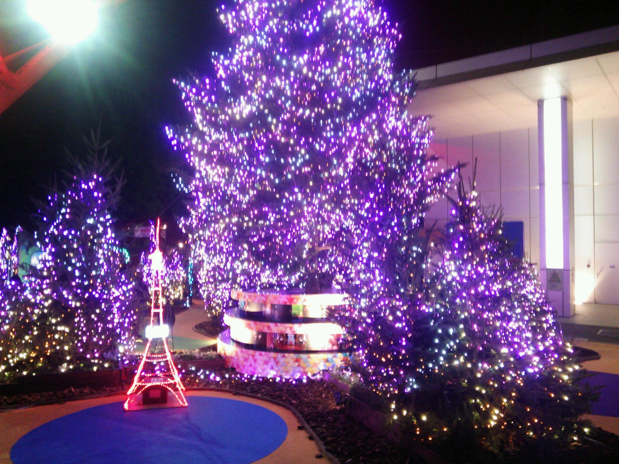 クリスマスイルミネーションの季節